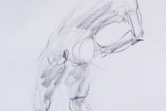 185-Figure-Gesture-Drawing-Charcoal-22x14